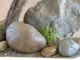 Taxidermy Osprey rock work