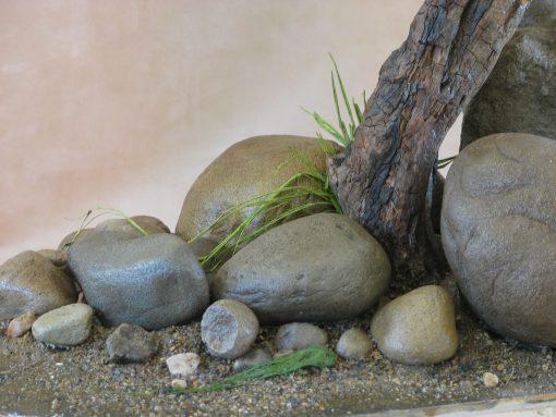 Osprey Pandion haliaetus rock work