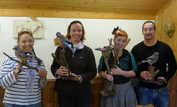 bird taxidermy traiing cause jay