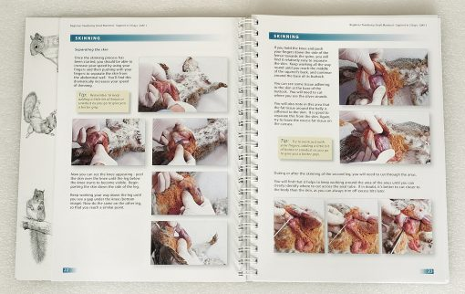 Beginner Taxidermy training book page22