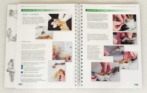 Taxidermy training book
