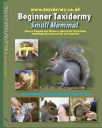 Taxidermy Training Book Small Mammal