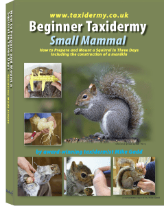 Taxidermy Training Book Small Mammal