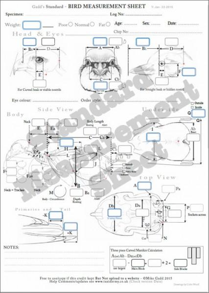 Standard Bird Taxidermy Measurement Sheet